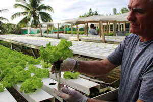 Mark Blumsky at his Niue farm.