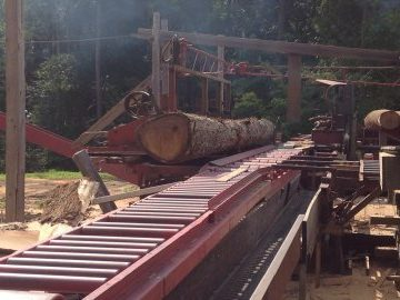 Logging_and_sawmilling